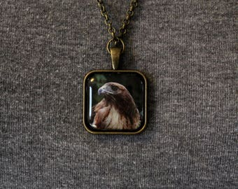"Red Tailed Hawk ""Ladyhawk"" Pendant Necklace"