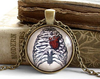 Anatomical Heart Necklace - Antique Anatomy Print Pendant in Bronze - Ribs - Rib Cage