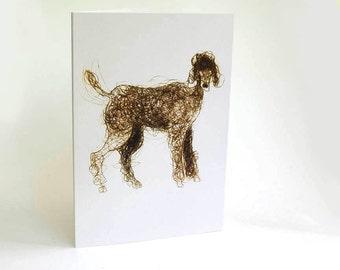Card, Greeting Card, Dog, Poodle, art card, dog art,  Bridget Farmer
