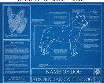 Personalized Australian Cattle Dog Blueprint / Australian Cattle Dog Art / Australian Cattle Dog Gift / Australian Cattle Dog Print
