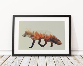 Norwegian Woods Fox by Andreas Lie