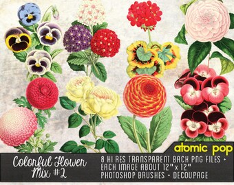 Instant Download // Colorful Flower Mix #2// Vintage Graphic Design, Decoupage PNG FIles, Photoshop Brushes Clipart