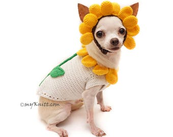 Sunflower Dog Costume, Cute Halloween Costume for Pets, Sun Flower Hair Accessory, Chihuahua Clothes DF94 by Myknitt - Free Shipping