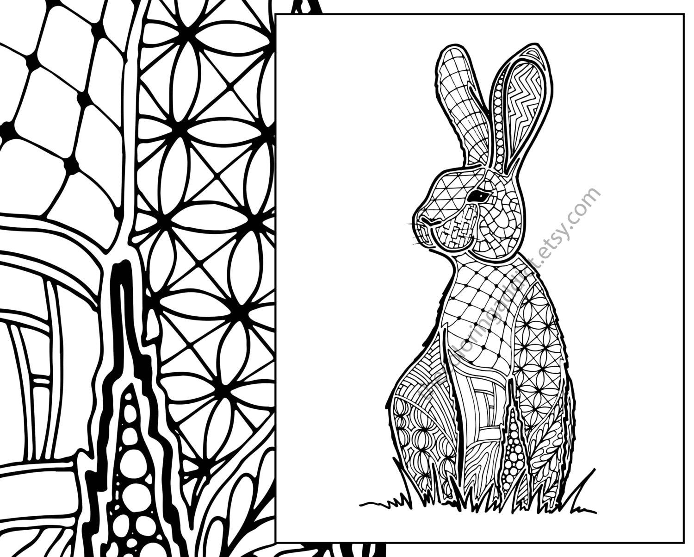 bunny rabbit coloring sheet animal coloring pdf zentangle