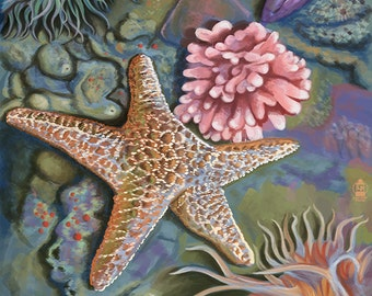 San Diego, California - Tidepool (Art Prints available in multiple sizes)