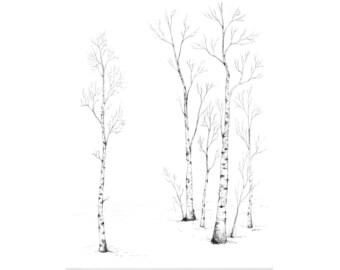 """Birch Forest - 11"""" x 14"""" Print"""