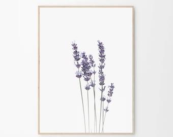 Lavender Print,Watercolour Print,Large Wall Art,Giclee Print,Watercolour Lavender Print,Botanical Print,Botanical Art,Art Print,Lavender