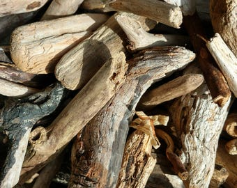 Driftwood for crafting, 50 pieces, natural driftwood, Oregon, Pacific Northwest