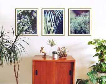 Living Room Wall Art, Set Of 3 Prints, Nature Prints, Set of 3 Wall Art, Photography Set, Forest Pattern Art Prints, Living Room Wall Decor