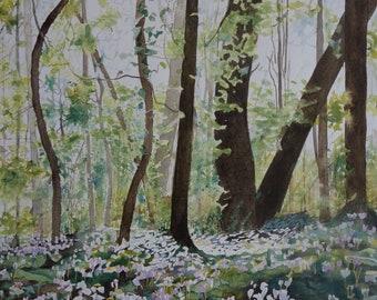 floral watercolor: cyclamen field
