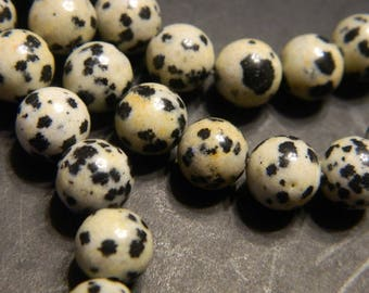"8MM Smooth Round Natural Dalmatian Jasper Beads - Dalmatian Jasper Gemstone Round Beads - 7.6"" Strand Dalmatian Jasper Beads, About 23 Beads"