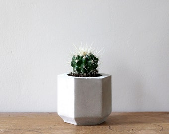 Small Hexagon Cement Planter perfect for a Cactus or Succulent Plant // Concrete Plant Pot - Handmade