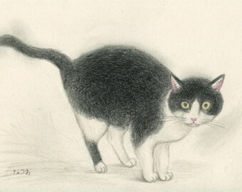 Cat original drawing - P007January2016