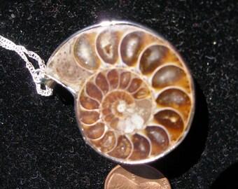 Pendentif - fossile d'ammonite de funky steampunk-y - FunkyAlternativeJewelry, trashionteam, OlympiaEtsy, SupportingArtists