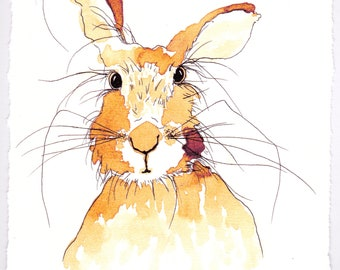 Inquisitive One Signed Hare Print
