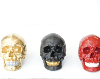 Design Your Own Life Size Human Skull - Resin Home Decor - Table Top Skeleton Head  SKxxxx