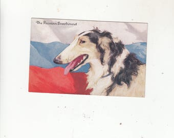 Antique Dog Postcard Borzoi/Boarhound Russian Flag In The Background Very Unique Dog Art