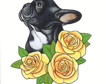 Französische Bulldogge Originalzeichnung / A4 Größe / gerahmt