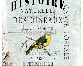INSTANT DOWNLOAD bird on a french ephmera, bird,  Carte Postale butterfly, digital sheet