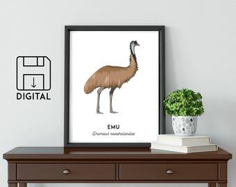 Emu print, printable bird print, animal poster, Australian native art, Australian wildlife art, nursery prints, nursery wall art