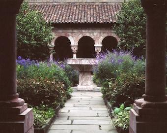 To the Garden 5 x 7