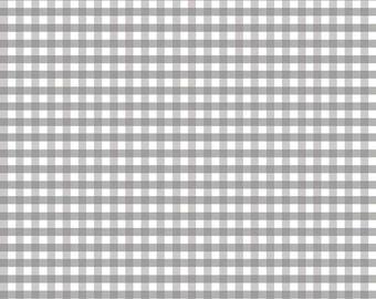 Riley Blake Designs, Medium Gingham in Gray (C450 40)