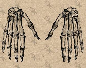 Vintage Anatomical Image Hand Bones Skeleton Instant Download Digital printable graphic for kraft  burlap stickers t-shirt HQ 300dpi