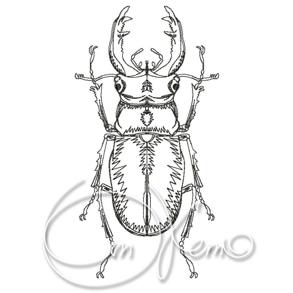 MACHINE EMBROIDERY DESIGN Bug Bettle Dor