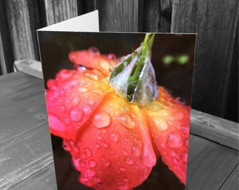 Raindrops on Roses Card, Mother's Day, Greeting Card, Any Occasion Card, Macro Photography,  Rain Photography, Love, Romantic Card,Flower