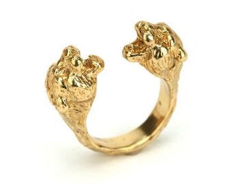 Dualing Panthers ring
