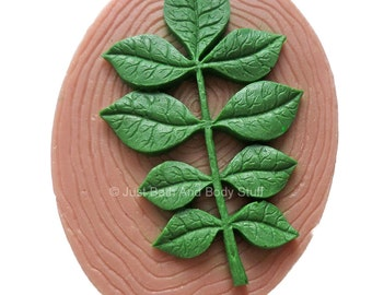 Leaf on Wood Handcrafted Novelty Soap Bar by Just Bath And Body Stuff / JBABS