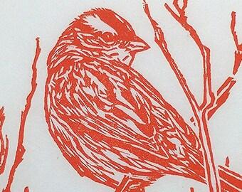 "White Crowned Sparrow, handmade woodblock print, 5""x7"", artist proof"