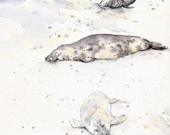 Norfolk Seals Winter Coastal  Scene Original Watercolour Painting