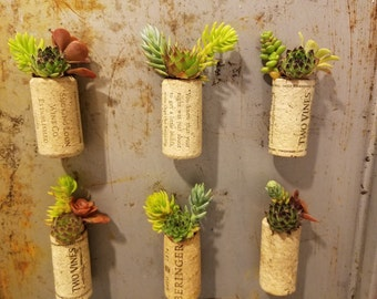 Magnet for your fridge or file cabinet! Live succulent cuttings in an upcycled wine cork.