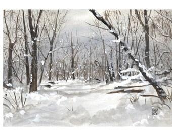 Paysage de Shenandoah en novembre - neige, hiver, forêt, forest, snow, winter, Xmas, noël, landscape