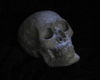 Paper Mache Small Skull