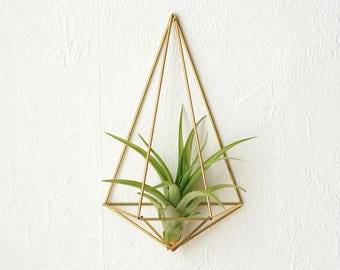 Air plant wall holder Himmeli Polyhedron No02 | wall sconce | brass planter | wall deco | air plant container | unique-gift-for-wife