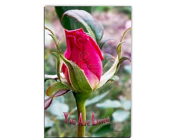 "Red Rose ""You Are Loved"" Half-Fold Photo Greeting Card by Melsart21 Photography Creations"