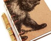 Bear Journal - Ursa Major...