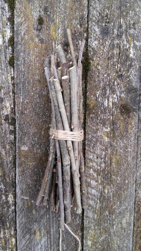 Oak tree branches wooden twigs wood sticks celtic pagan wiccan
