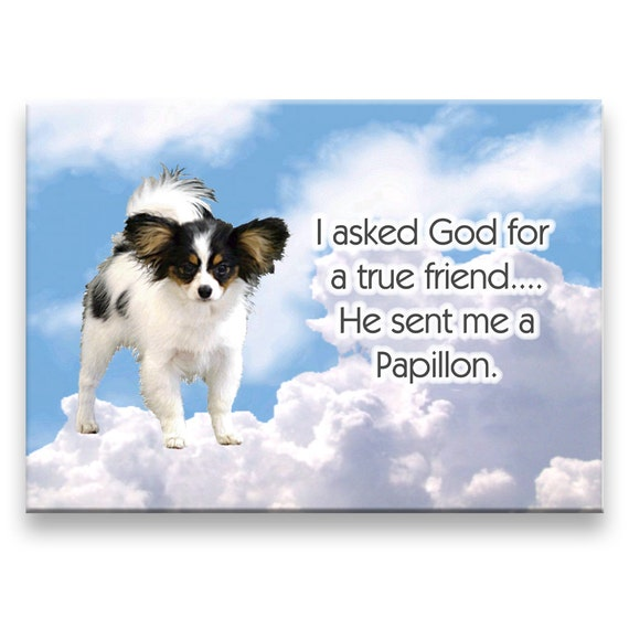 Papillon True Friend Fridge Magnet