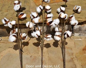 """Cotton Stems~Cotton Boll~19"""" Stem~Rustic Wedding~Cotton Stick~rustic decor~farmhouse decor~fixer upper-cotton branches"""