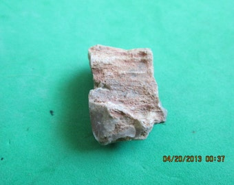 Agatized Petrified Wood Limb Cast Limbcast Brown with a Pink Interior Natural Free Form Stone 29