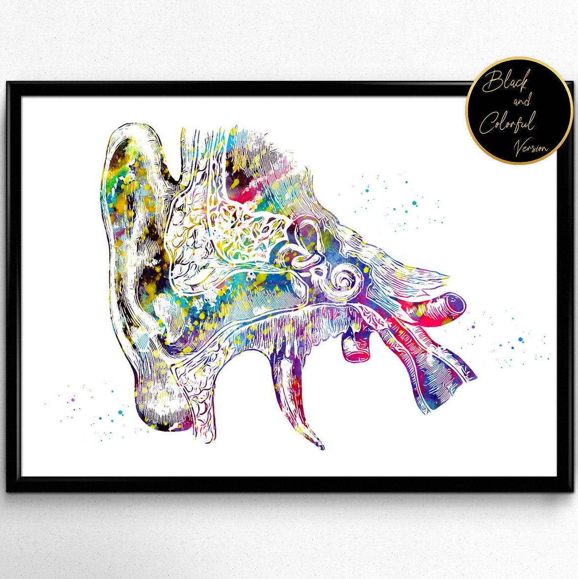 Menschliche Ohr Anatomie Aquarell Druck Audiologie Plakat