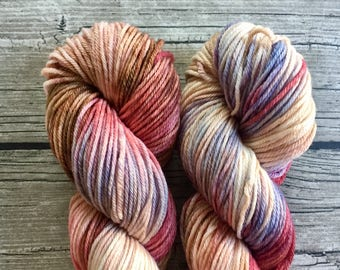 I Could Have Danced All Night - Superwash Merino Hand Dyed Yarn - Worsted Weight Yarn - Hand Dyed Yarn