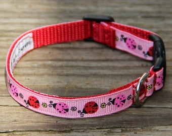 Ladybug Dog Collar - narrow width for tiny dogs / puppies
