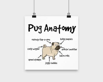 BEST SELLER Pug Anatomy Poster; gift for pug lovers, pug poster, funny pug gift, pug lovers gift, pug dad, pug mom, made in USA