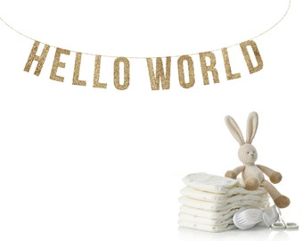 HELLO WORLD Glitter Garland. baby shower decorations, reveal party banner, baby shower banner, Pink or Blue banner Baby Shower Banner,