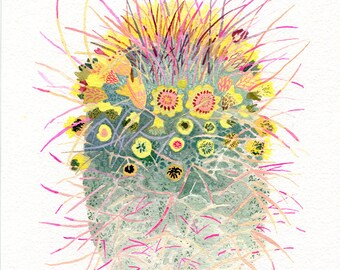 Barrel Cactus - Large Archival Print