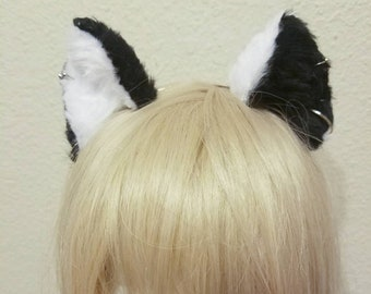 Inverted black and white pierced cat ears